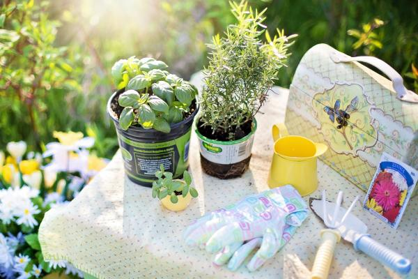 10 Tendencias de Jardinagem 2016