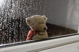 Chuva De Emoções