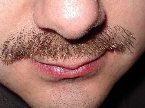 Como aparar o bigode