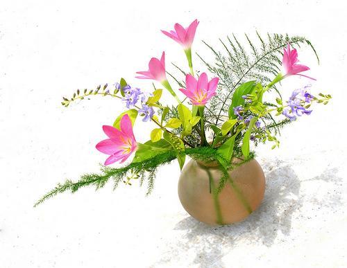 Como fazer com que as flores durem mais tempo