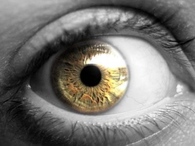 Como funciona seu olho