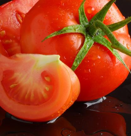 Como cultivar tomates