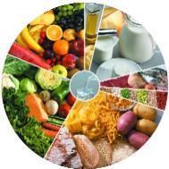 Dietoterapia - Uma forma de vida
