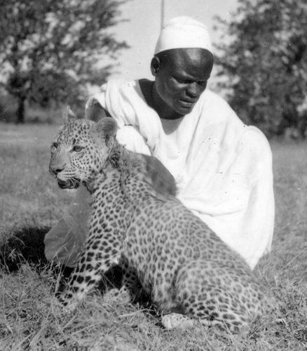 """Faça um """"eco-safari"""" no Quénia"""