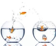 Interculturalidade vs Insegurança vs Evolução e Mudança