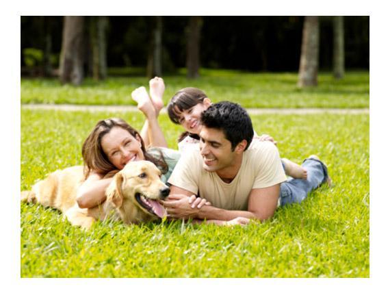O animal de estimação e os benefícios á saúde