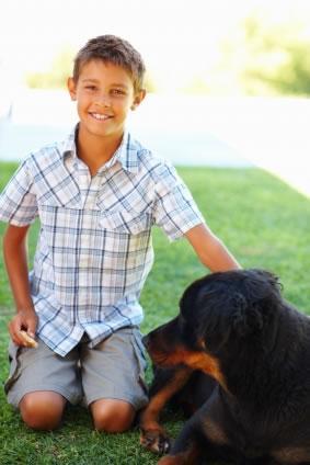 O cachorro deu pra morder seu filho
