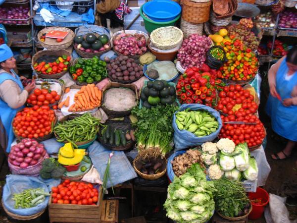 O Essencial Sobre o Vegetarianismo