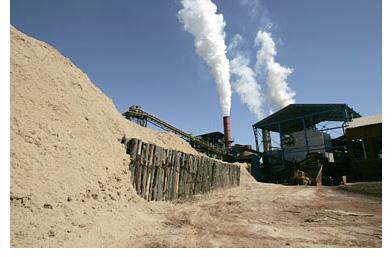 O potencial energético da biomassa no Brasil
