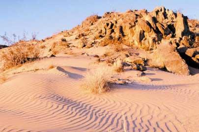 Os habitats mais áridos da Terra