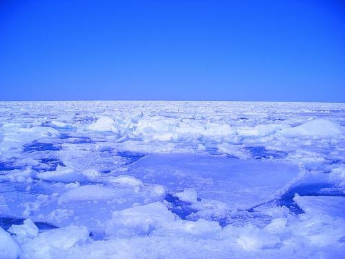 Polo Norte deve virar mar em dez anos