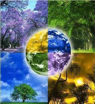 Preserve o Planeta