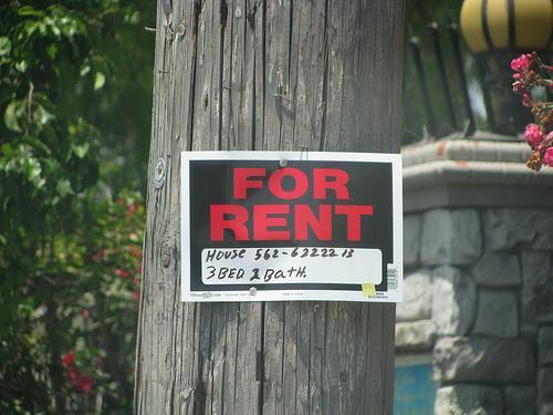 Tenho uma casa para arrendar – E agora?
