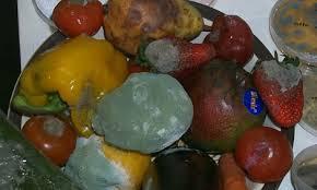 Truque Para Não Desperdiçar Legumes