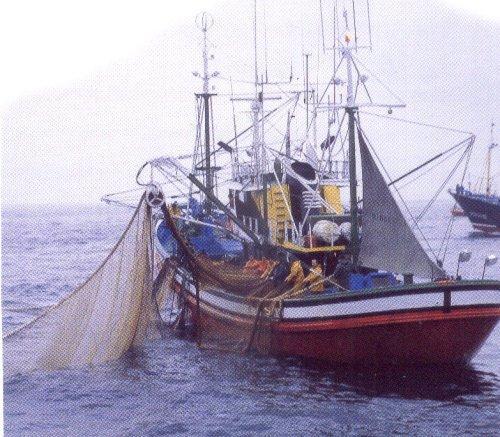Uma Nova Direção para Pesca Europeia