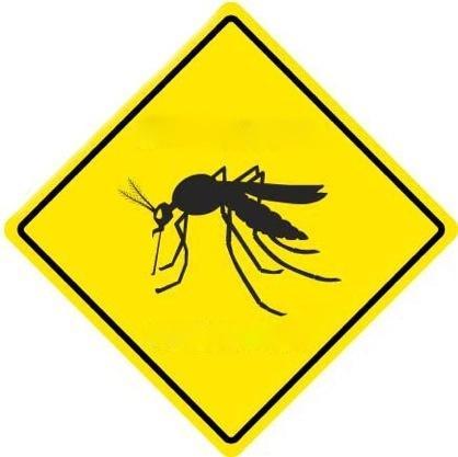 Como Acabar Com Moscas E Mosquitos