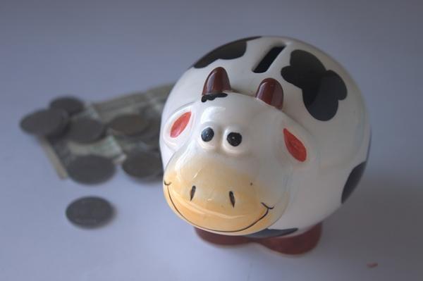 Como Ganhar Dinheiro Do Governo De Graça