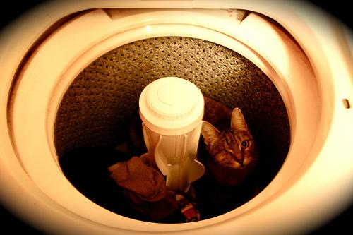 Como lavar roupa na máquina