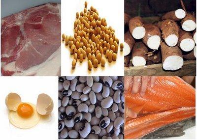 Dieta da proteina - Emagreça em pouco tempo