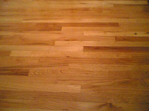 Escolha a melhor madeira para o chão de sua casa