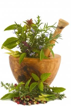 Faça sua horta de temperos caseiros