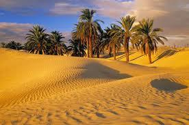 Informações turísticas de Tunísia, África