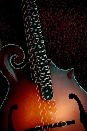 Instrumentos de cordas