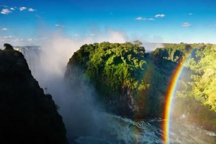 Linda Amazônia pulmão do planeta