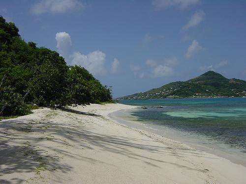 Nade com cavalos, observe baleias e tartarugas ou aprecie o calipso na ilha de Dominica