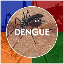 O Que É A Dengue?