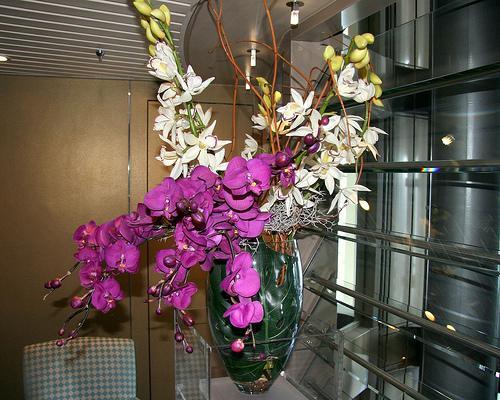 Plantas e flores artificias