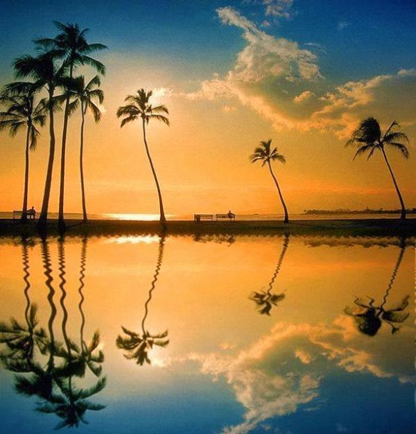 Repercussão Do Turismo No Havaí