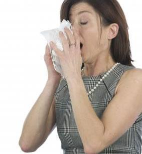 Respire melhor sem mofo