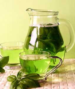 Todo dia Chá Verde!