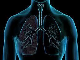 Tratamento das Bolhas, Broncopneumonia e Bronquite