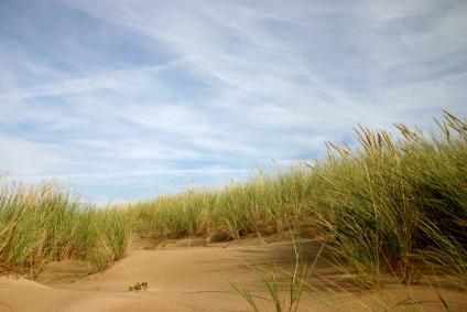 A Erosão Das Praias