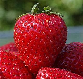 Veja Quais As Vitaminas Presentes No Morango