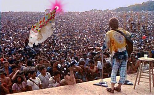Woodstock – Uma memória Inesquecível